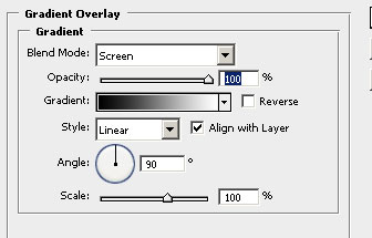 layer style